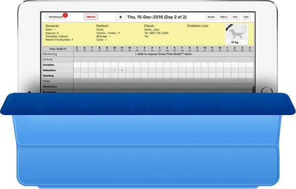 Smart Flow Sheet on iPad